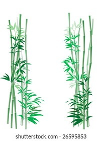 Illustration of green bamboo canes and leaves on white