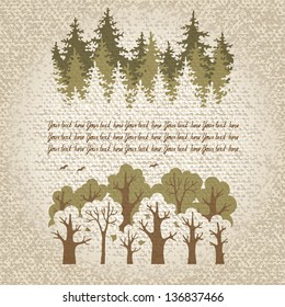 Illustration of green coniferous and deciduous  forest with a place for your text. Vector Illustration.