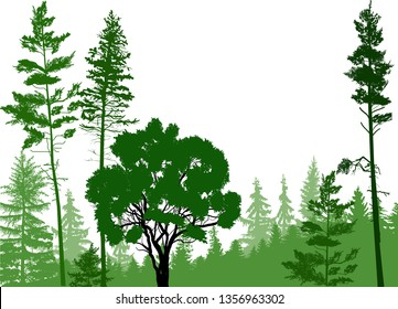 illustration with green forest isolated on white background