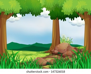 Illustration of a green forest with rocks