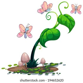 Illustration of a green plant with butterflies on a white background