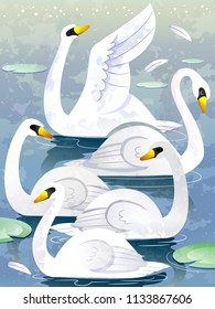 Illustration of a Group of Swan Called Herd. Collective Noun. Eps10