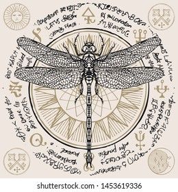 Illustration of a hand-drawn dragonfly on an old abstract illegible text written in a circle with magical inscriptions and symbols. Vector banner in retro style