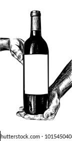 Illustration of hands holding wine bottle.Hand drawn isolated vector illustration. Alcohol drink splash with bubbles. Vintage sketch. Beverage drawing for bar and restaurant menu, poster, banner