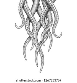 Illustration of hanging tentacles in a vintage style