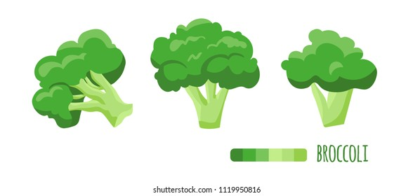 Illustration of healthy food, Broccoli.