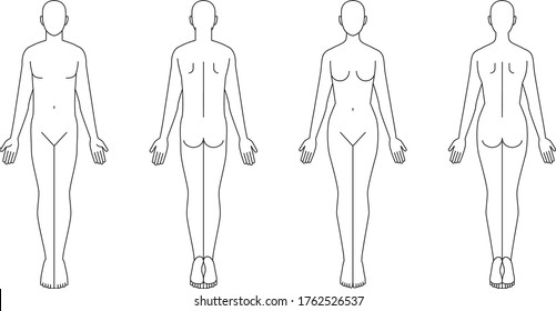 Illustration of the human body. Male female sketch