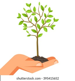 Illustration of human hand holding green small tree. Image for booklets, banners, flayers, article and social media.