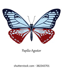 Illustration of Indian Swallowtail Butterfly - Papilio Agestor
