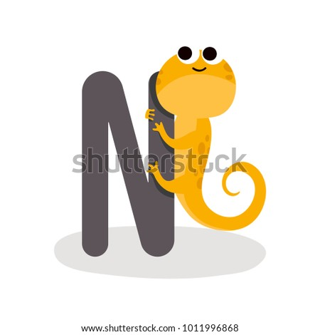 Image of: Zoo Illustration Of Isolated Animal Alphabet With Newt Vector Shutterstock Illustration Isolated Animal Alphabet Newt Stock Vector royalty