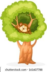Cartoon Tree Monkey Images Stock Photos Vectors Shutterstock Cute cartoon monkey spider monkey hanging on tree. https www shutterstock com image vector illustration isolated cartoon monkey on tree 161607788