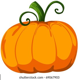 Image result for cartoon pumpkin