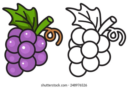 Illustration of isolated colorful and black and white grapes for coloring book