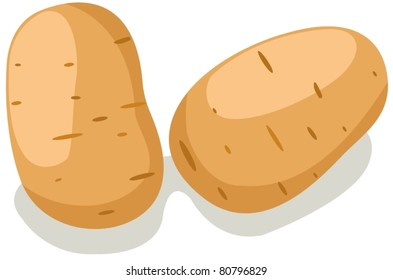 illustration of isolated potatoes on white background