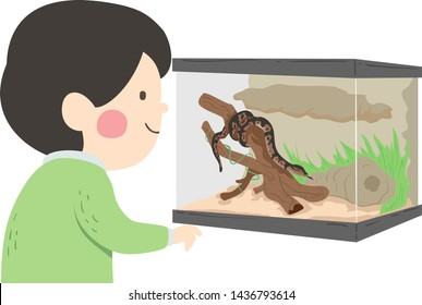 Illustration of a Kid Boy Looking at a Pet Snake Inside a Reptile Terrarium