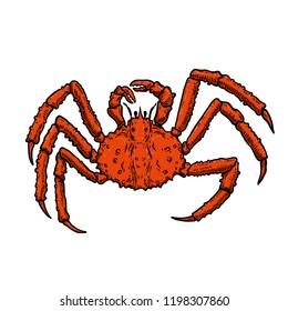 Illustration of King Crab isolated on white background. Design element for logo, label, emblem, sign, poster, menu, t shirt. Vector image
