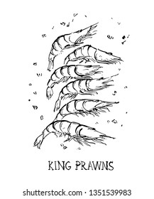 Illustration of king prawns with herbs.