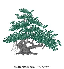 An Illustration of Landscaping Tree Symbol or Isometric Banyan Tree for Garden Decoration