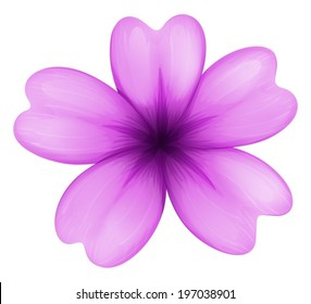 Illustration of a lavender flower on a white background