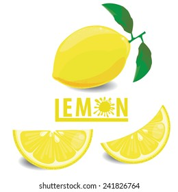 illustration lemon fruits on white ,vector 5