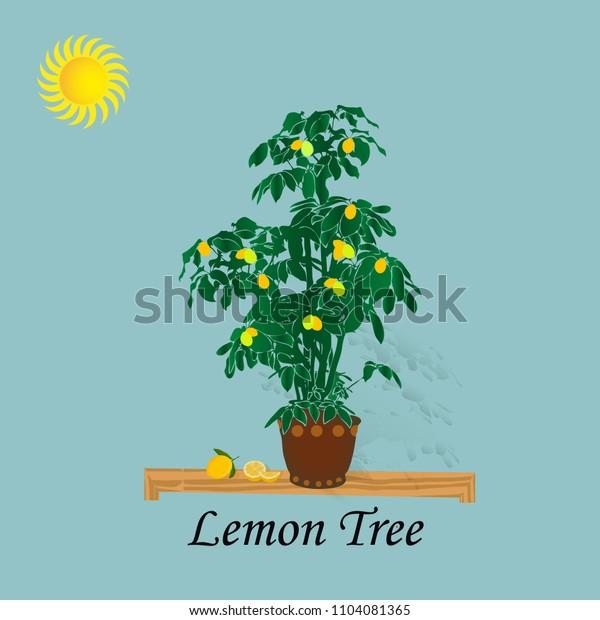 Illustration lemon tree on a light blue background and sun, cartoon-vector