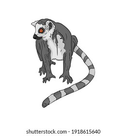 Illustration of a lemur isolated by a liner. Lemur cata for printing on a printer, blank for designers