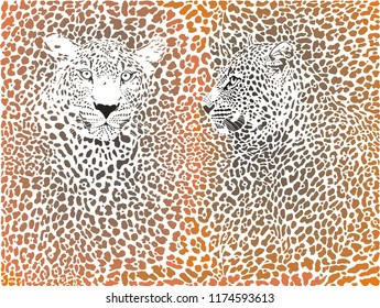 illustration leopards skin brown background