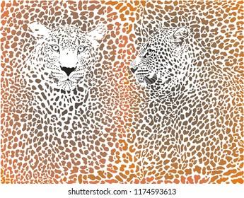 illustration leopards skin brown background