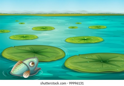 Illustration of lily pads on water