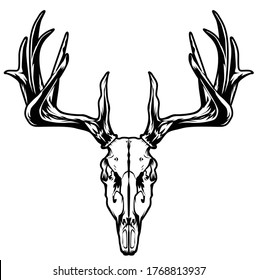 Illustration of line art with an animal theme using a skull object from a deer head