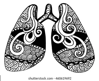 illustration of lungs. Doodle drawing of human organ