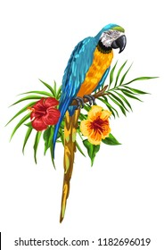 Illustration of macaw parrot. Tropical exotic bird, palm leaves and hibiscus flowers.
