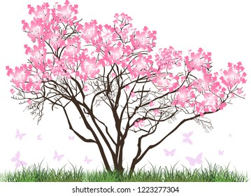 illustration with magnolia blossom tree in green grass