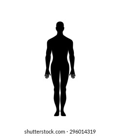 Illustration Man Silhouette Isolated on White Background - Vector