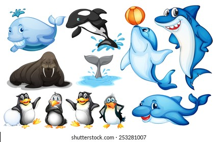 Illustration of many kind of sea animals
