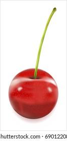 Illustration of mellow cherry.