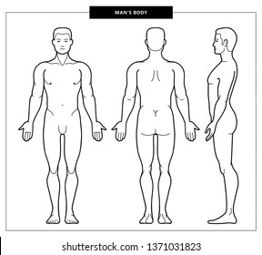 medical drawing human body images stock photos vectors shutterstock https www shutterstock com image vector illustration mens body male anatomy front 1371031823