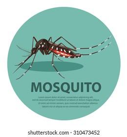 illustration.  mosquito cartoon