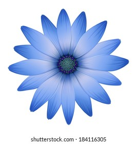 Illustration of a multi-petal flower on a white background