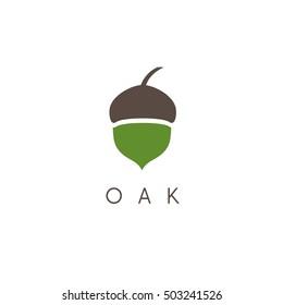 Illustration of oak tree acorn vector icon