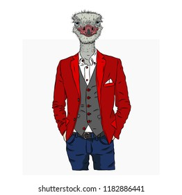 Illustration of ostrich hipster dressed up in jacket, pants and sweater. Can be used for printing on T-shirts, flyers, etc. Vector illustration