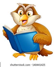 Illustration of an owl reading on a white bakcground