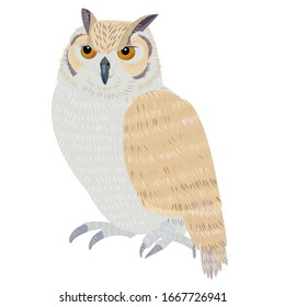 Illustration of owl.  A symbol of knowledge.