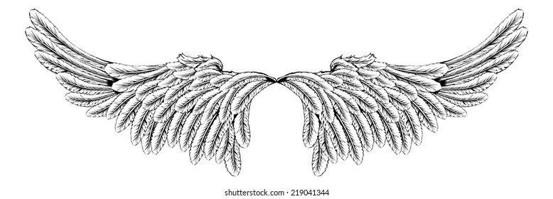 An illustration of a pair of wings like angel or eagle wings