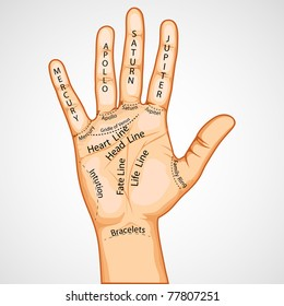 illustration of palmistry map on open palm on abstract background