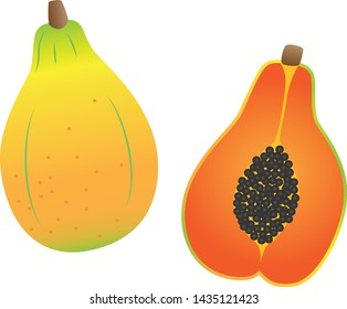 Illustration of papaya and the cross section