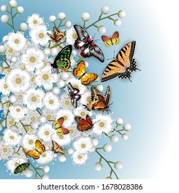 Illustration of pattern with cherry blossom branches, colorful butterflies and sky background