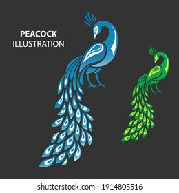 Illustration of Peacock making by pen tool