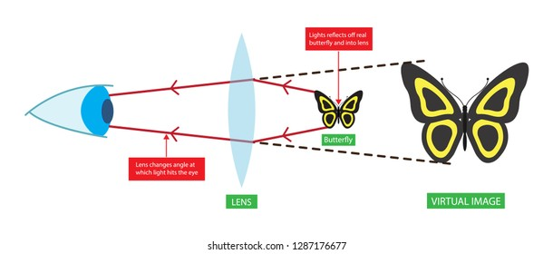 illustration of physics, lens changes angle at which light hits the eye, Magnification is the process of enlarging the apparent size, not physical size of something
