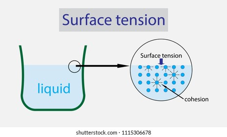 illustration of Physics, Surface tension of liquid diagram